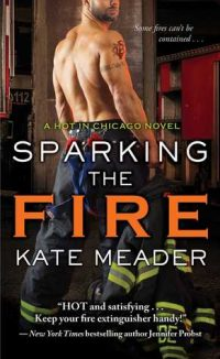 Review – Sparking the Fire by Kate Meader